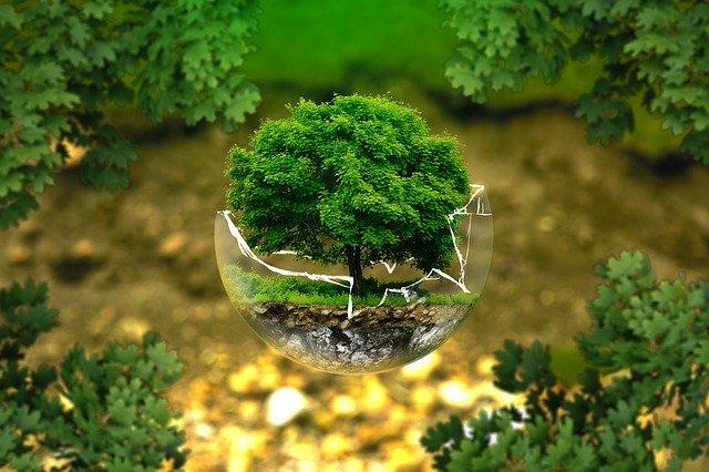 森 浮遊 緑 グリーン エコ